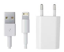 Ladegerät und Kabel zu iPhone